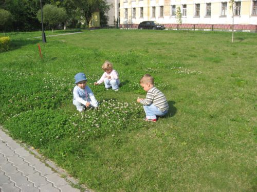 Собираем цветы